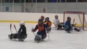 sledgehockeypicture