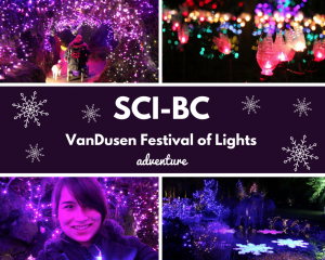 VanDusen Festival of Lights
